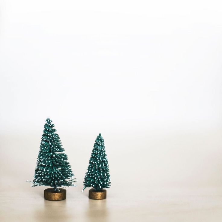 Serious Question:  Do you have your Christmas Tree up yet? – – – – – #christmastree #treeisup #christmasgoals #holidaygoals #holidayplanning #christmastraditions #holidayready #christmasready #ohwowyes #authenticity #choosehappy #littlejoys #beingboss #hustlewithease #dreamersanddoers #livewhatyoulove #designisinthedetails #workfromwhereever #laptoplifestyle #productivityhacks #girlpreneur #fempreneur #pathtoprofitabilty #feedgoals #lifeissogood #dontbeafraid #chooseyourlife #youcreateyourreality #buildalifeyoulove #womensupportwomen