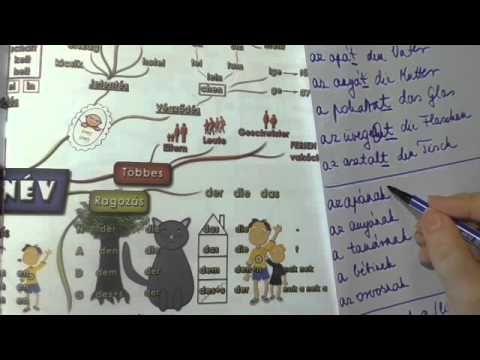Német nyelvtan kezdőknek. Főnévragozás. A Német Nyelvtan Térkép segítségével. A…
