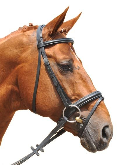 English style bridle from HKM has reins with anti-slip rubber coating and  includes flash