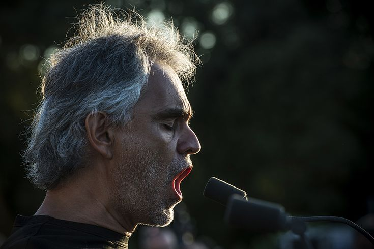 "IPA 2015 - Honorably Mention // Andrea Bocelli's is one of the most important italian artist, worldwide appreciated and known. Here is a reportage of the latest concert in ""Raggia di Caserta"", near Napoli, Italy."