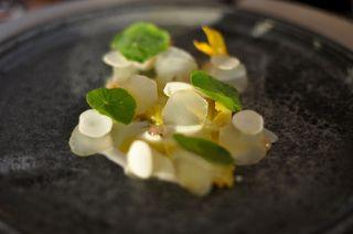 restaurant noma - Yahoo!検索(画像)