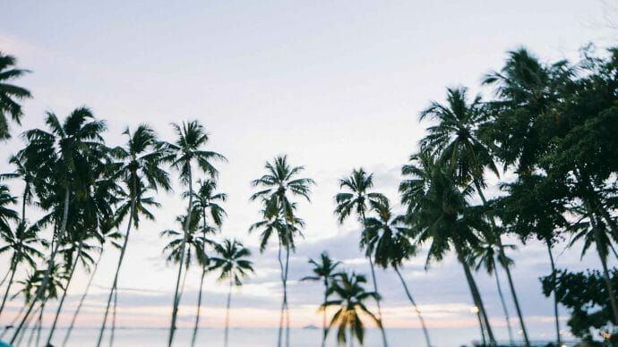 116 Free Beach Wallpapers For Your Phone Desktop In 2020 Computer Wallpaper Desktop Wallpapers Macbook Air Wallpaper Beach Wallpaper
