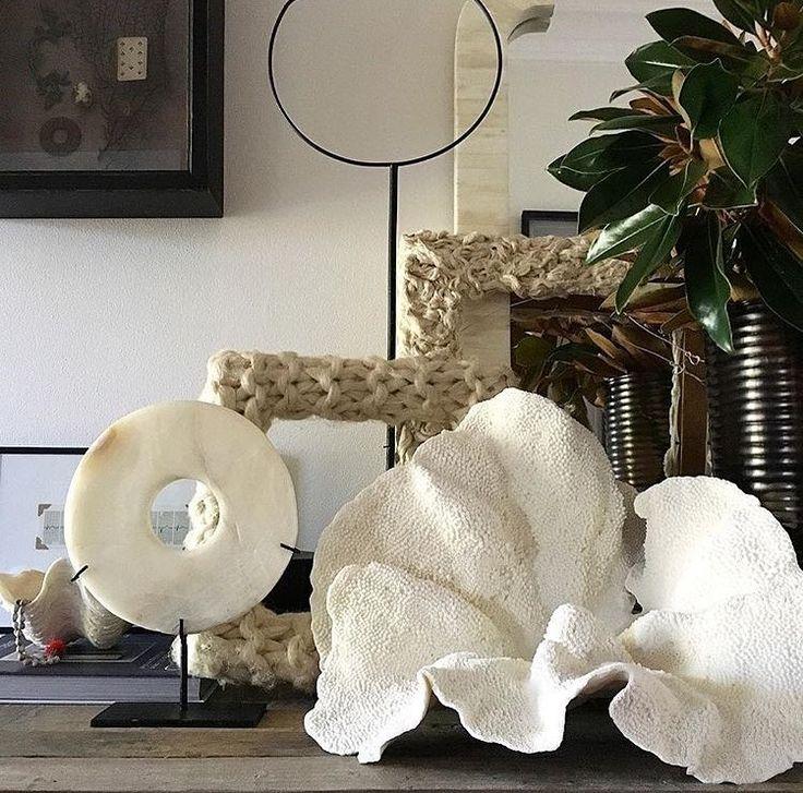 Si te gustan los corales no dejes de visitar nuestra tienda online: http://ift.tt/2hmGDjL Lo quieres?......lo tienes . . #decoracion #decoration #decor #deco #decoración #decoração #decoracao #decorating #decoraçao #coral #giftidea #interiordesign #interiorstyling #interiordesignideas #interiorismo #interiors #interior #interior #shopping #shop #shoponline #shoppingonline