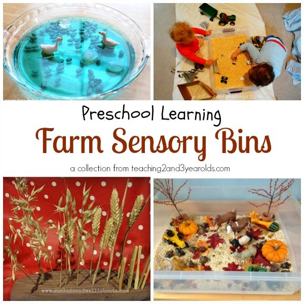 Preschool farm sensory bins from Teaching 2 and 3 Year Olds.