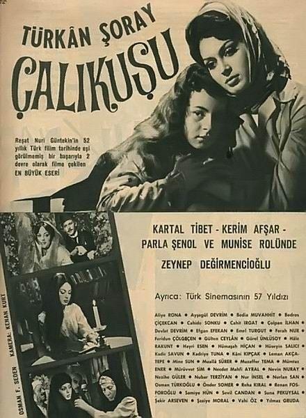 Çalıkuşu (1966) : Türkan Şoray, Kartal Tibet #sinema #eski #old #cinema #istanbul #film #poster #afiş #çalıkuşu #istanlook
