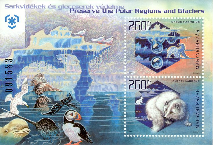 Hungary Preserve the Polar regions and Glaciers