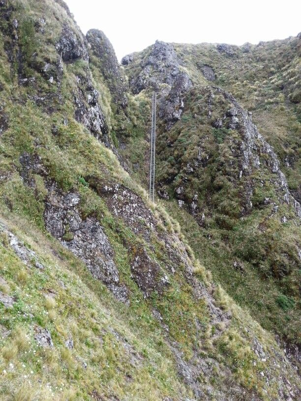 20 Metre Steel Ladder Twin Peaks.