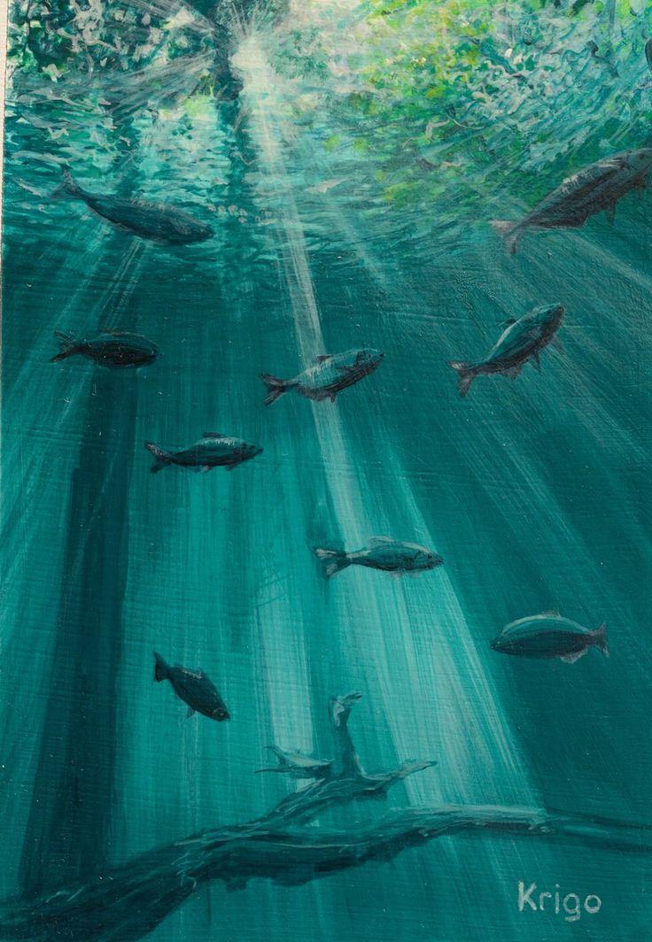 Amazon overflow, fish, light, sun rays, underwater ...