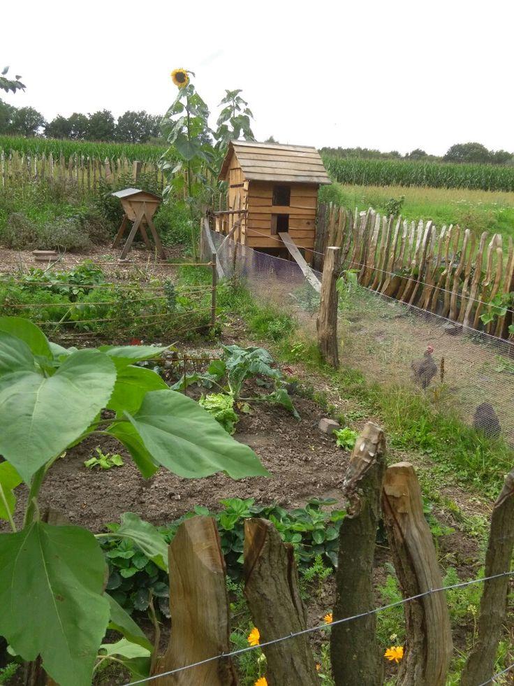 Marvelous Garten mit H hnerstall und Bienenbeute