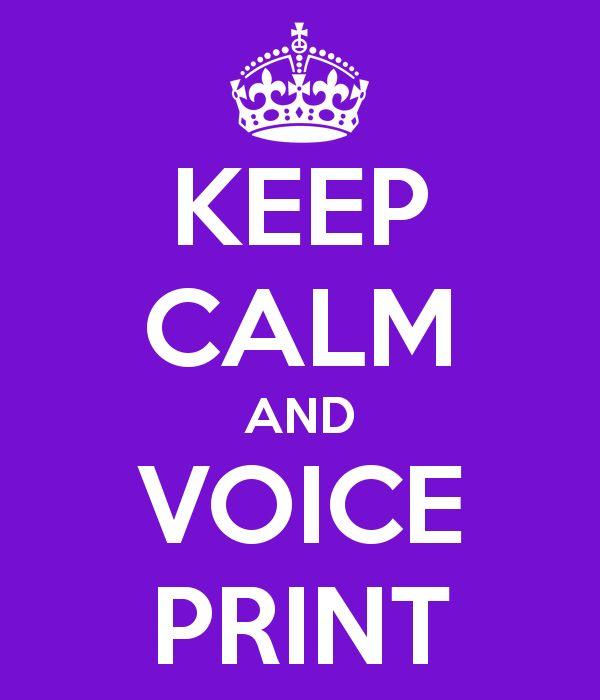 KEEP CALM AND VOICE PRINT