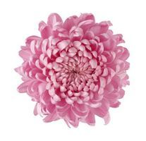 32 best silk flowers images on pinterest silk flowers fabric 3 beautiful artificial flower arrangement ideas mightylinksfo