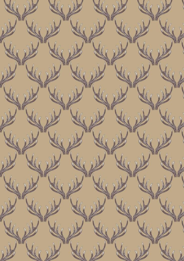 A157.1 - Antlers on natural