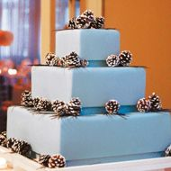 winter wedding cake!