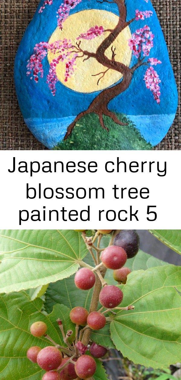 Japanese Cherry Blossom Tree Painted Rock 5 Japanese Cherry Blossom Cherry Blossom Tree Tree Painting