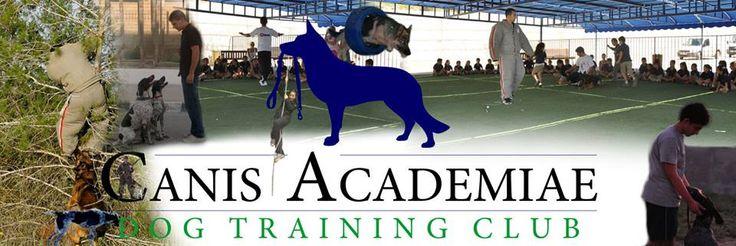 K.K.T.C köpek eğitimi
