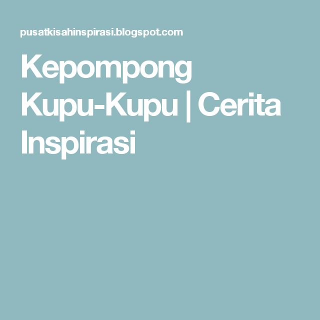 Kepompong Kupu-Kupu   Cerita Inspirasi
