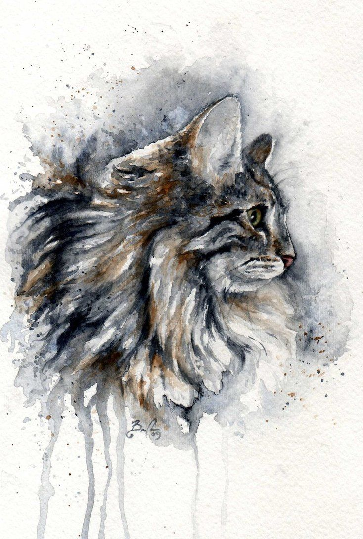 25+ best ideas about Watercolor Cat on Pinterest | Watercolor ...