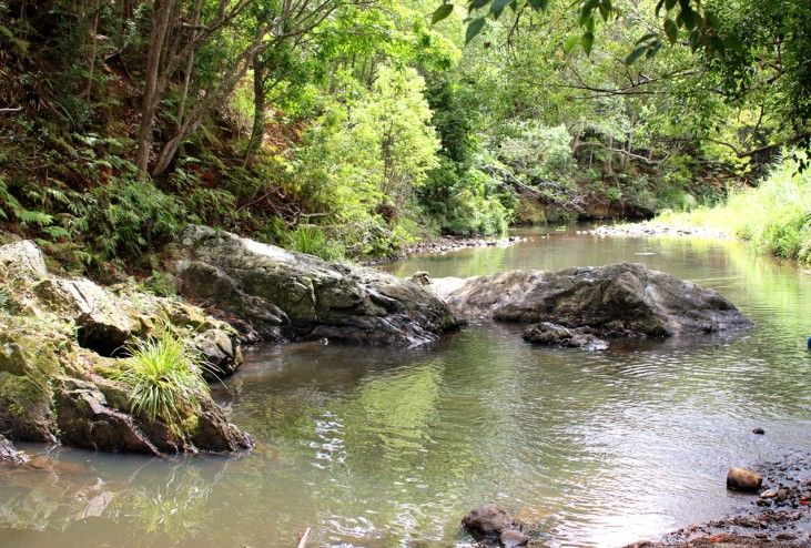Currumbin Rock Pools - a Review - What's it like and how do you get there?