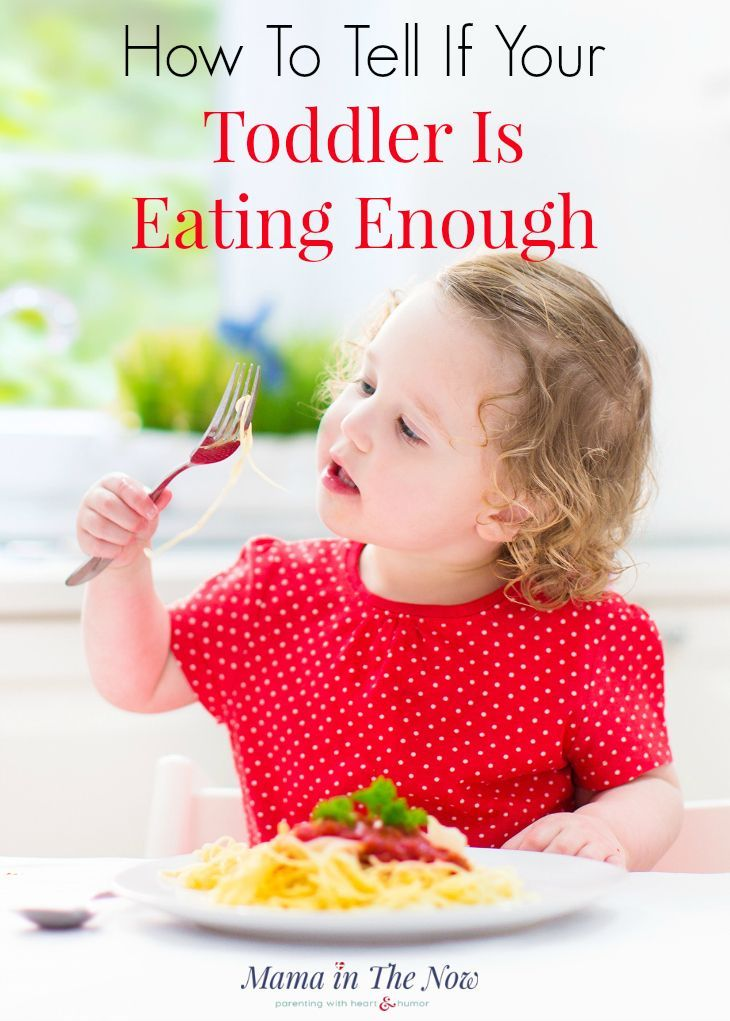 Know the guidelines of what a toddler should eat. What is a balanced diet for a toddler. This tool will help parents of picky eaters.