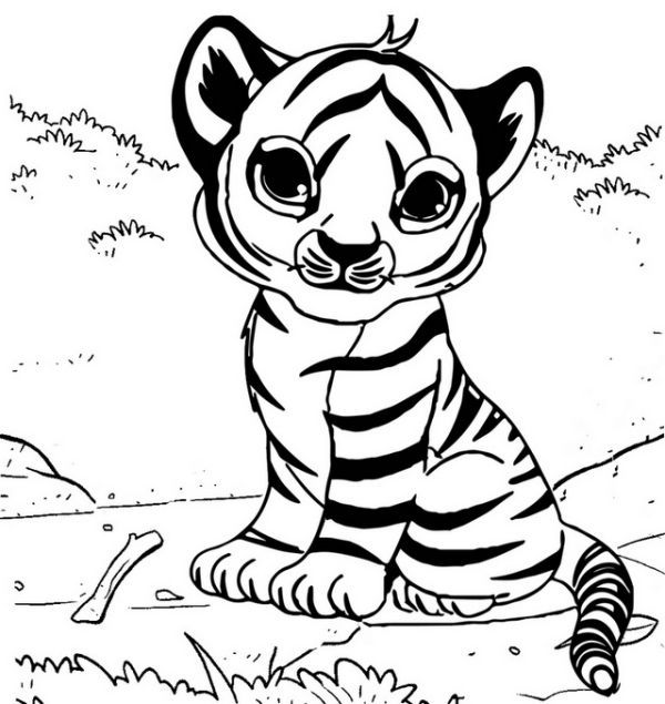 Cute Baby Tiger Coloring Page Animal Coloring Pages Coloring Pages Cat Colors