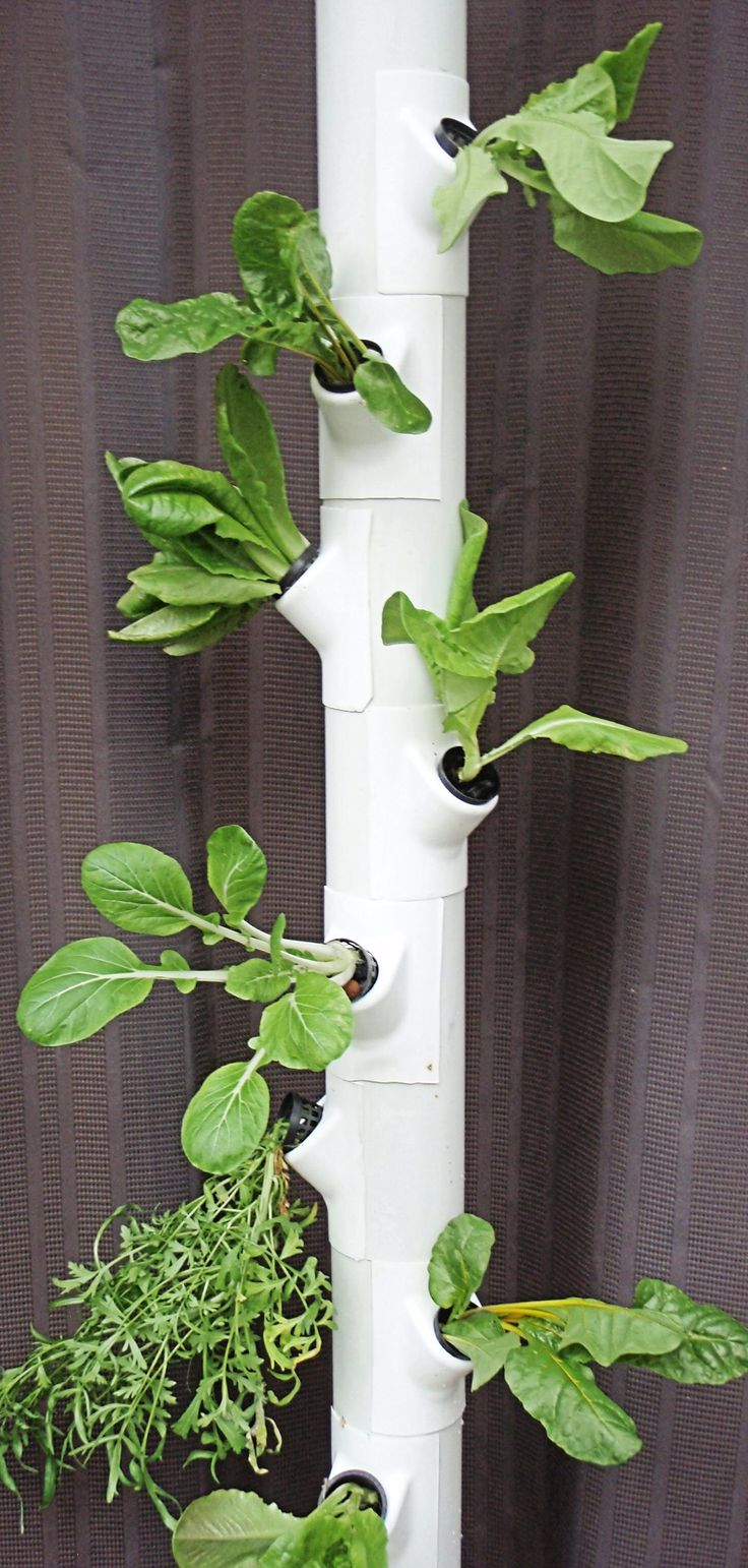 Pvc Pipe With Gropockets Used For Lettuce Pvc Vertical