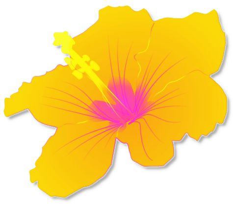 15 best clip art images on pinterest flower clips flower hair rh pinterest com tropical christmas clipart free tropical clip art free printables borders