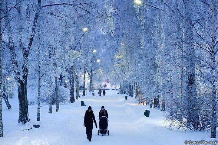 Kaisaniemi in the winter