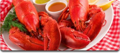 anything with lobster in it...im going to eat it.