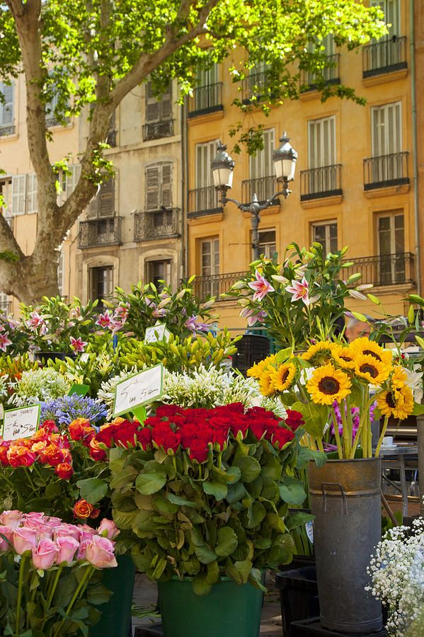 Flower Market, Aix-en-Provence , France                                                                                                                                                      More