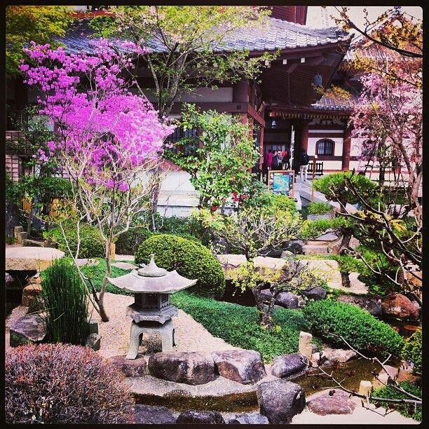 Hasedera flower garden