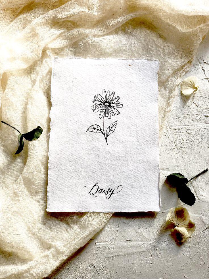 Botanical illustration print. Modern florals. The daisy- the flower of true love