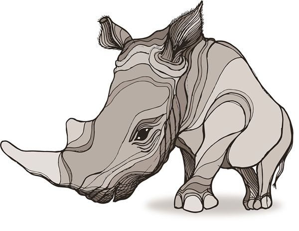 Breaking The Brand - Stop the Demand for rhino horn in Viet Nam. Become Nia's friend and take action!