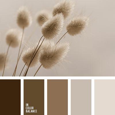 коричневый, монохромная коричневая палитра, монохромная цветовая палитра, оттенки коричневого, пастельные коричневые тона, подбор цвета, цвет какао, цвет кофе, цвет шелухи чеснока, цвет шоколада, цветовое решение.