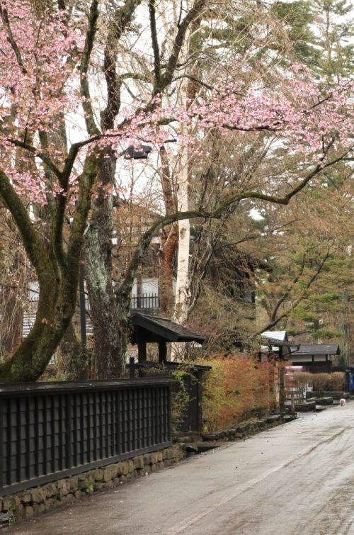 Kakunodate samurai mansion