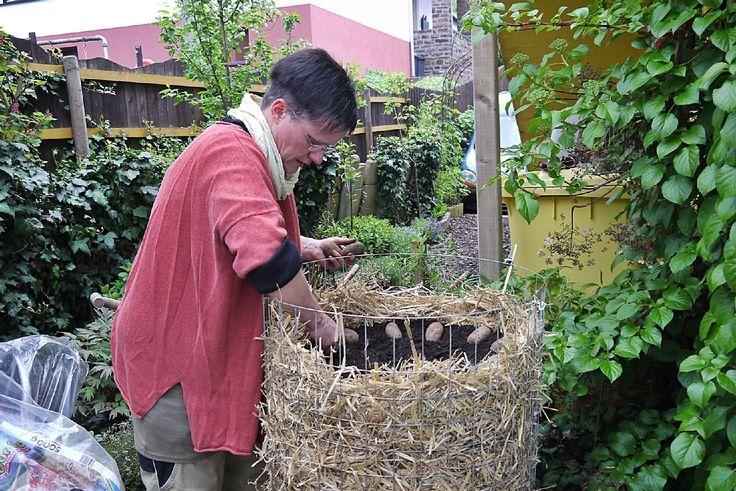 kartoffeln anpflanzen kartoffeln anpflanzen gem se obst kr uter kartoffeln anpflanzen gem se. Black Bedroom Furniture Sets. Home Design Ideas