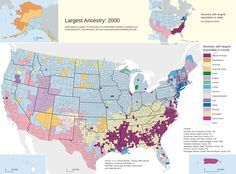 Largest ancestry in the US