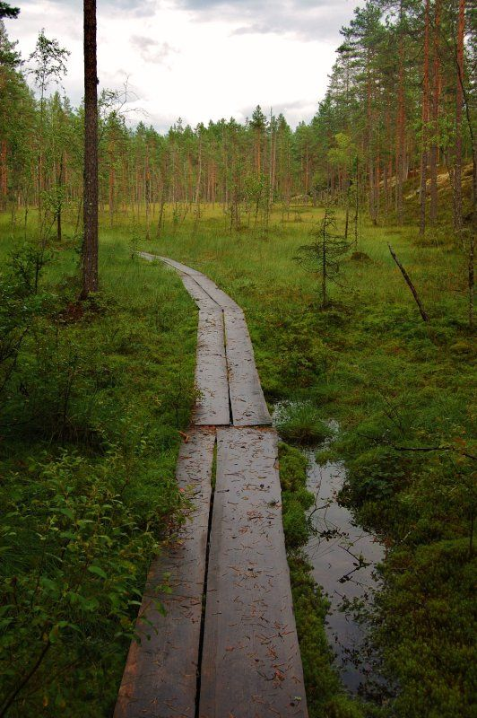 Ruovesi, Finland.