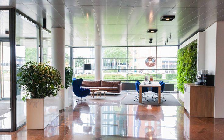 Groene wand en Largo planter met Schefflera in Utrecht   Hydrocultuur | Interieurbeplanting | Onderhoud | Planten | Interieur | Inrichting | Bedrijf | Kantoor | Moswand |Kantoorplanten | Groene wanden