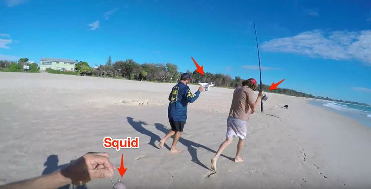 These Guys Attempt Drone Fishing For Longtail Tuna Watch