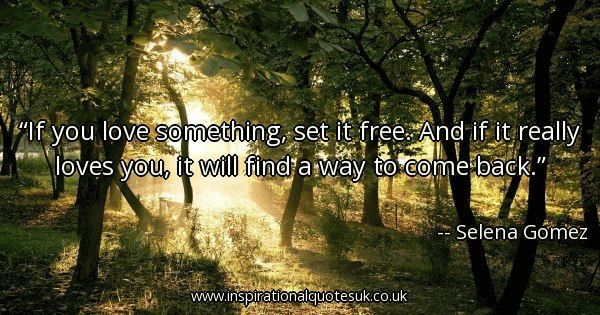 If You Love Something Set It Free And If It Really Loves You It Will Find A Way To Come Back View Quotes Really Love You Inspirational Quotes