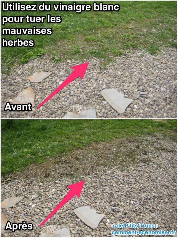 Utilisez du vinaigre blanc pour éliminer les mauvaises herbes dans l'allée du jardin
