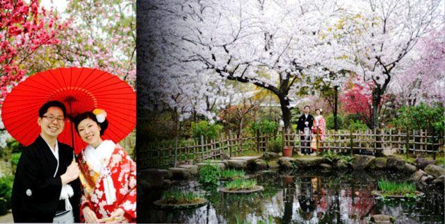 桜の時期の前撮り!!!
