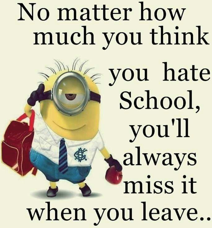 Funny Minion Quotes About School: 713 Best Minions Images On Pinterest
