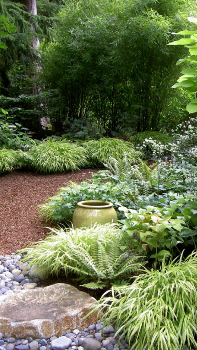 shade garden idea. Most of the plants here can be partially dug up, divided, and replanted for more plants. We have ferns, hosta, and shade grasses.