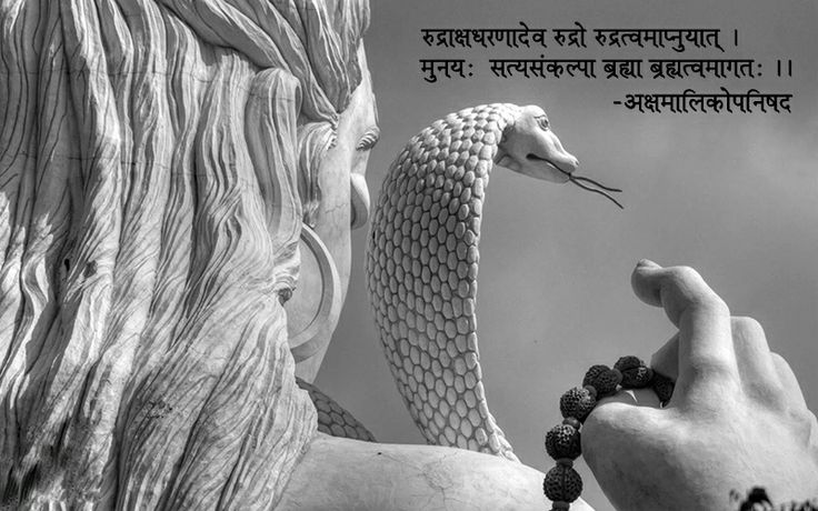 Empower Yourself...with the Jewel of the God's.(Rudraksha) Om Namah Shivay http://www.rudralife.com/