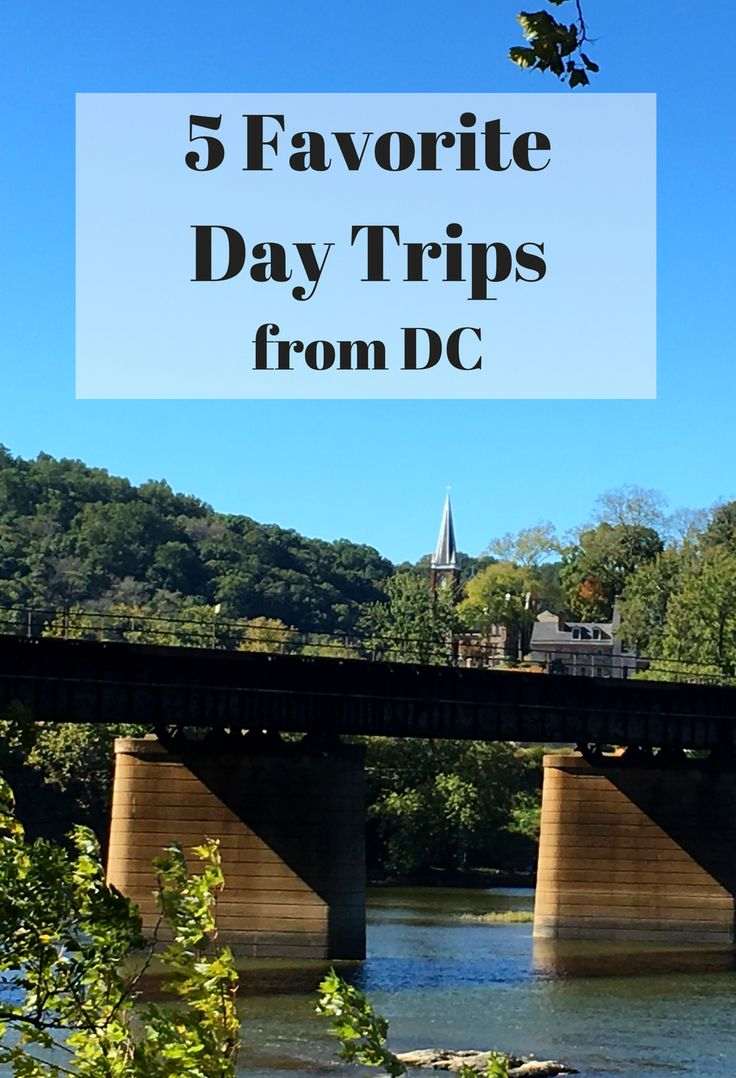 Check out these 5 favorites, including places like Annapolis, Maryland and Harpers Ferry, West Virginia for an easy day trip from DC.