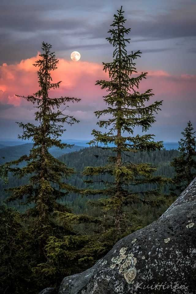 Finland twilight by Asko Kuittinen
