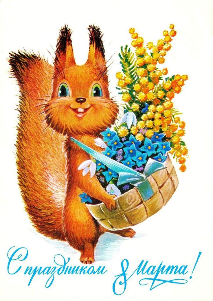 Советские открытки белка