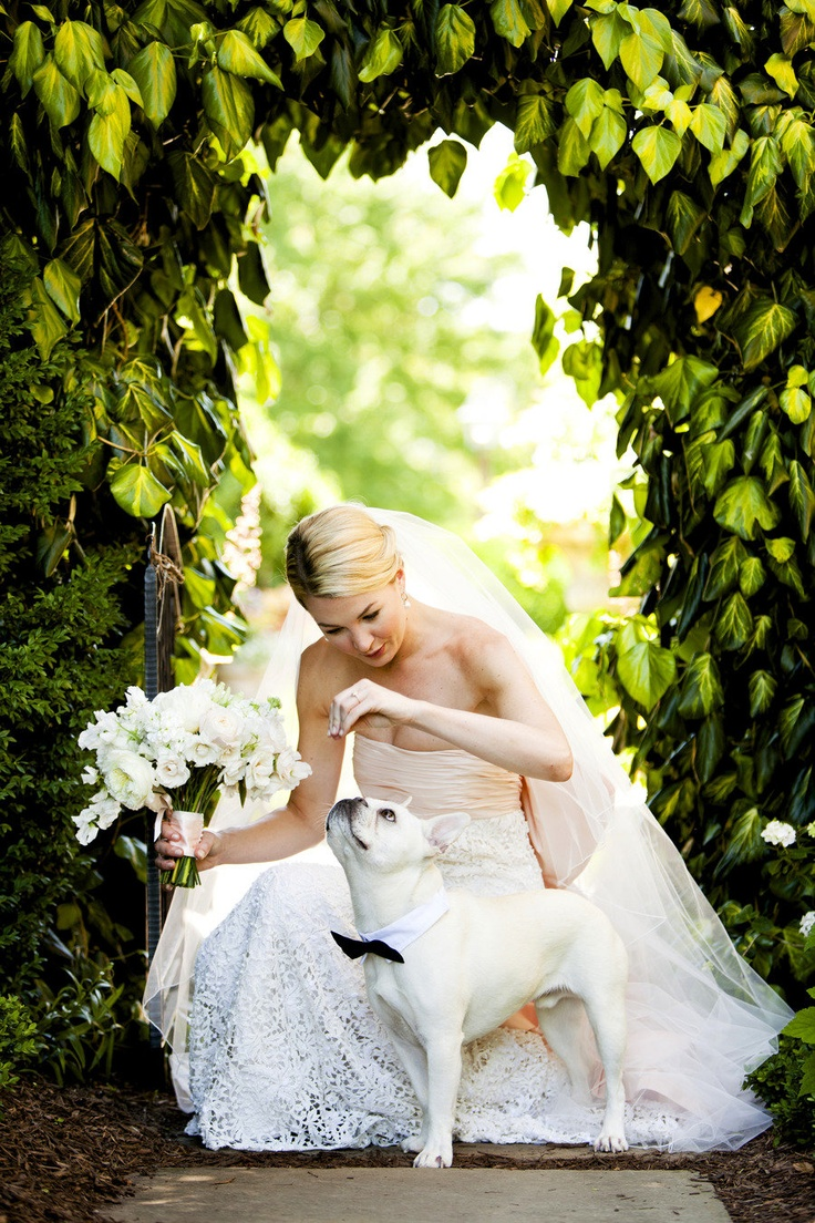 What a cute shot! #wedding #weddingpets #photography