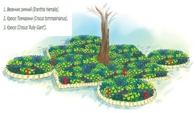 flower arrangements flower beds